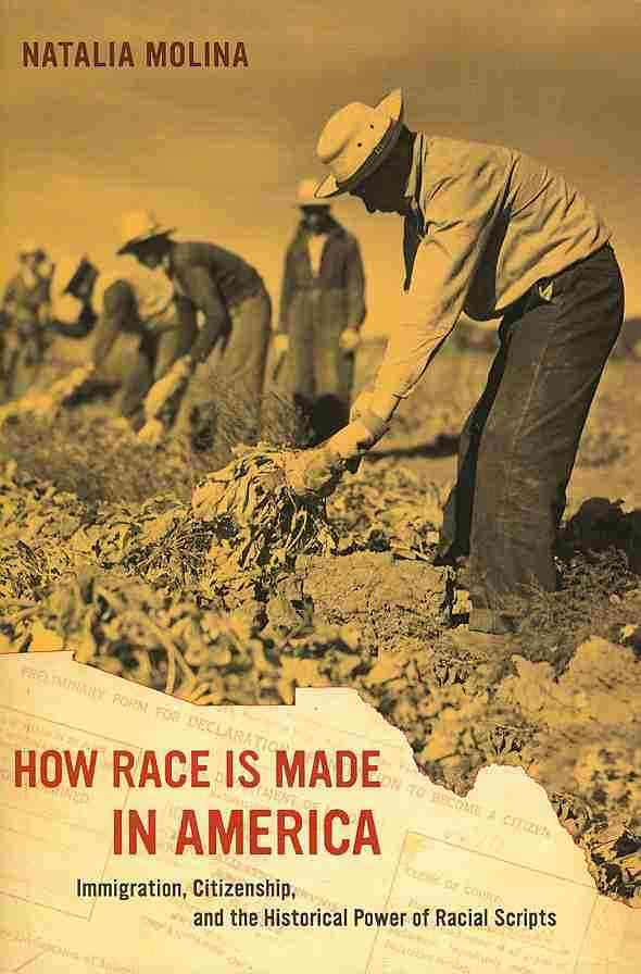 How Race Is Made in America By Molina, Natalia